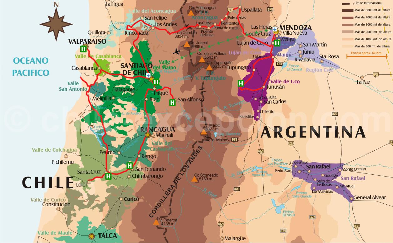 Vins du Chili et d'Argentine : Charme - 2