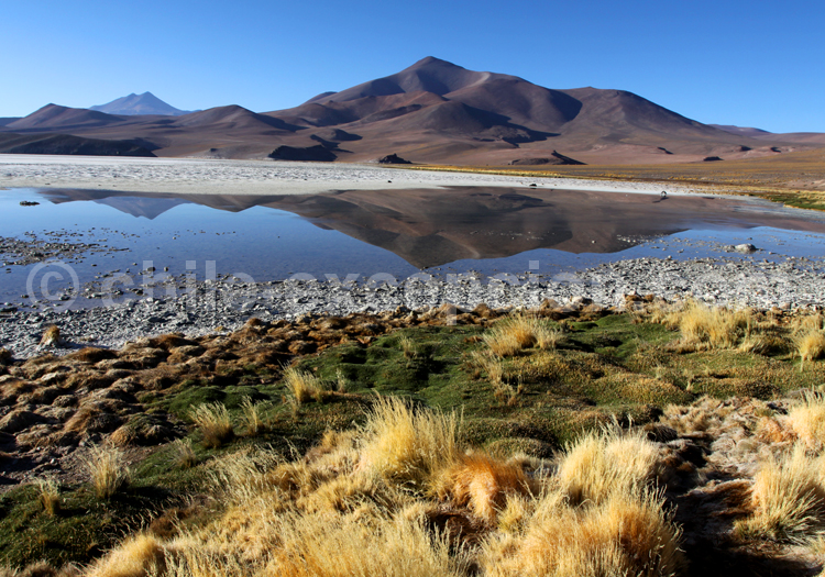 Cerro de La Laguna, parc Nevado Tres Cruces