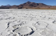 Salar de Maricunga, parc Nevado Tres Cruces