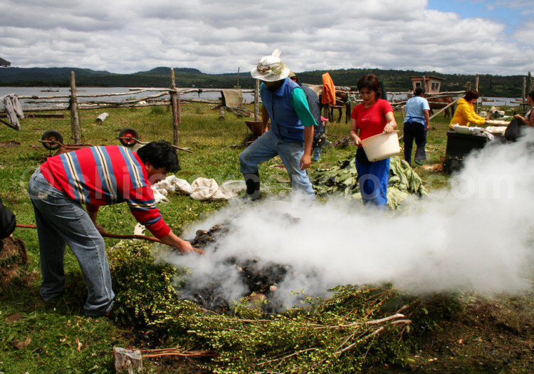 Préparation du curanto, Pangue, Chiloé © Pedro Alvarado