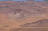 Géoglyphes de la vallée de Lluta, Région de Arica. Crédit Claudio