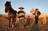 Les Huasos