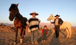 Culture Chili: Le cavalier huaso et les chevaux du Chili