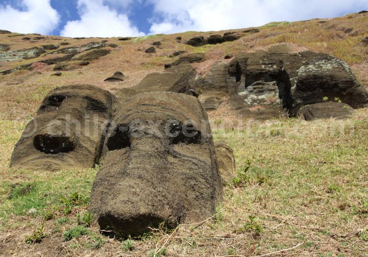 Volcan Rano Raraku, la carrière des Moaïs, île de Pâques