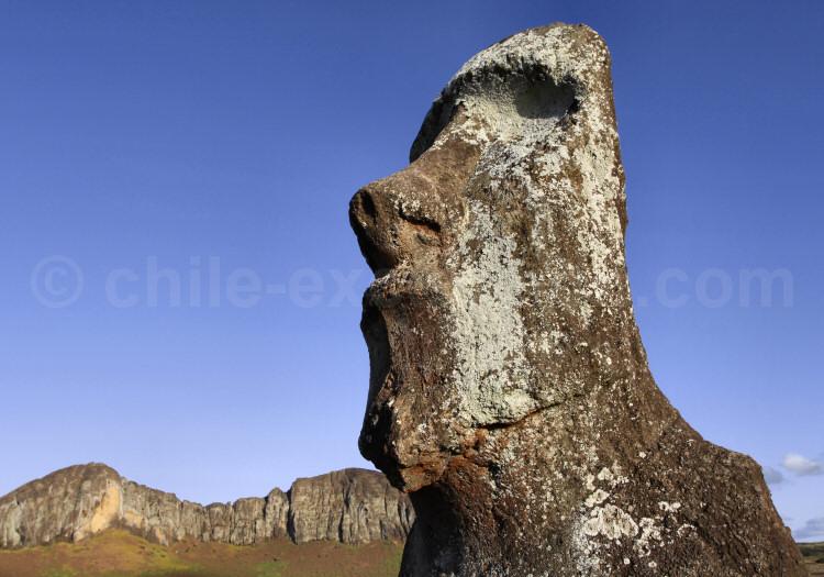 Proche de l'Ahu Tongariki, île de Rapanui