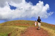 Trek île de Pâques, volcan Maunga Tere Vaka