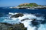 Isla Cachagua, Chili