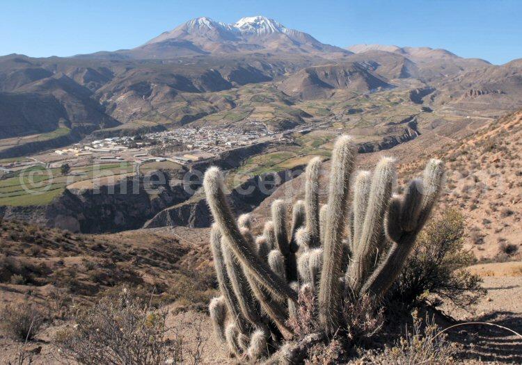 Putre, volcan Tarapaca