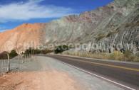 Los Lapachos, route de Purmamarca à Salinas Grandes