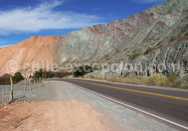 Los Lapachos, route de Purmamarca a Salinas Grandes
