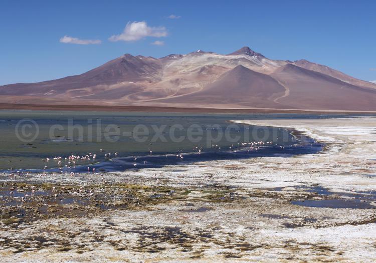 Panorama sur la lagune del Negro Francisco