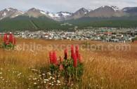 Ushuaia, Terre de Feu, Argentine