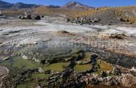 Randonnée geysers du Tatio