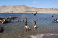 Caleta Pan de Azucar, région Atacama
