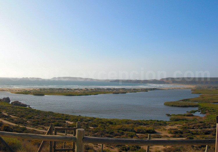 Laguna Conchalí. Crédit Guillermo Mann