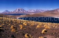 Lagunes Miscante et Meñique