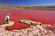 Laguna Roja, Caritaya
