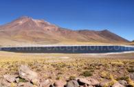 Lagune Miñiques, Atacama
