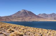 Lagune Miscantis, Atacama