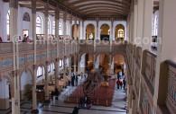Musée national d'histoire naturelle à Santiago du Chili - cc Jason Quinn
