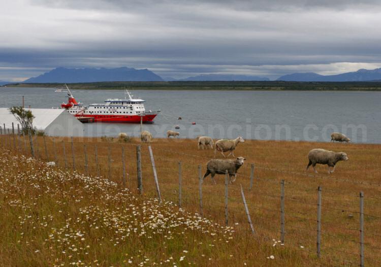 Le Skorpio à quai, Puerto Natales