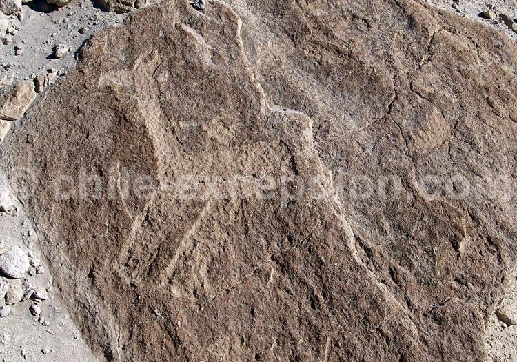Pétroglyphes Ofragía