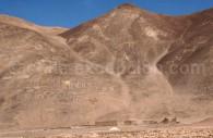 Géoglyphes Los Pintados