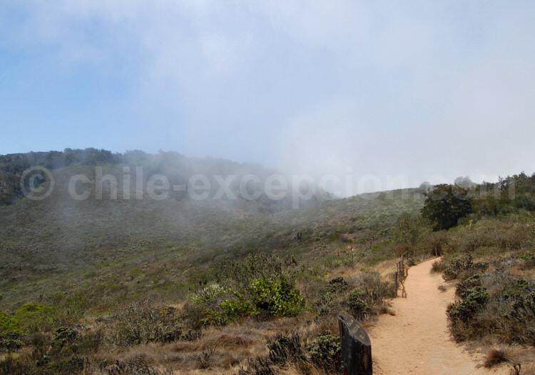Parc national Bosque de Fray Jorge