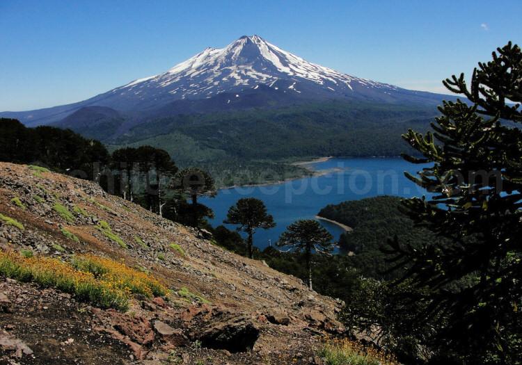 Parque Conguillío, volcán Llaima. Crédit Javier Acuña Ditzel