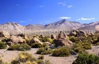 Parc national Volcan Isluga. Crédit Jana Bakunina