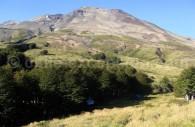 Parc national Puyehue. Crédit Miguel Ramírez