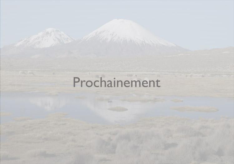 Prochainement