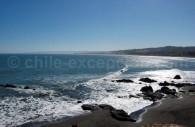 Punta Lobos, Pichilemu. Crédit Juan Fco. Arzola
