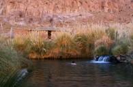 Termas de Puritama, Desierto de Atacama