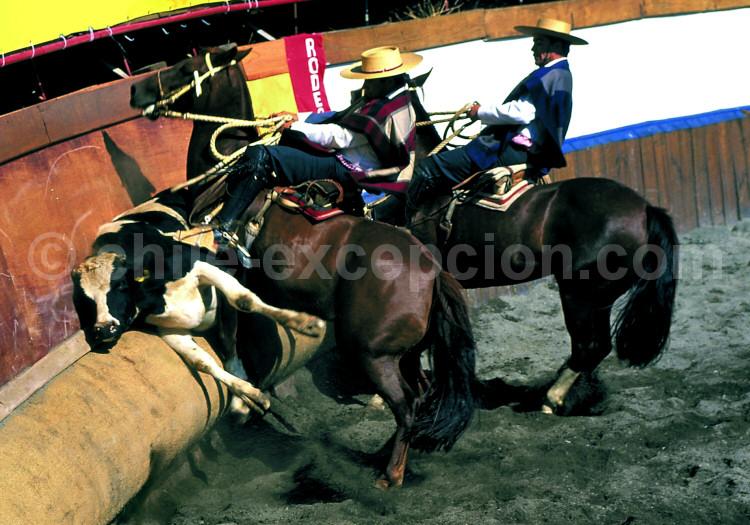 Collera en action à Rancagua - Crédit Carlos Olivera
