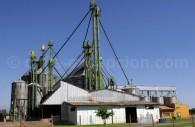 Sillo à Grain, San Fernando, vallée de Colchagua