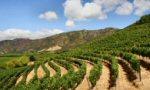 Vins du Chili: Régions viticoles du Chili