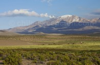 Volcan Isluga, Guallatiri, parc national Isluga