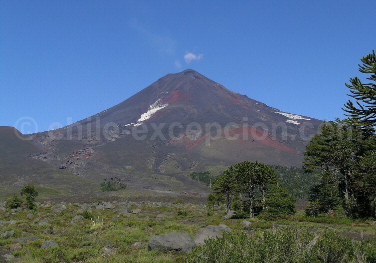 Volcan llaima en activité