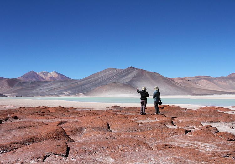 Désert, lagunes et salars de l'Atacama - 13