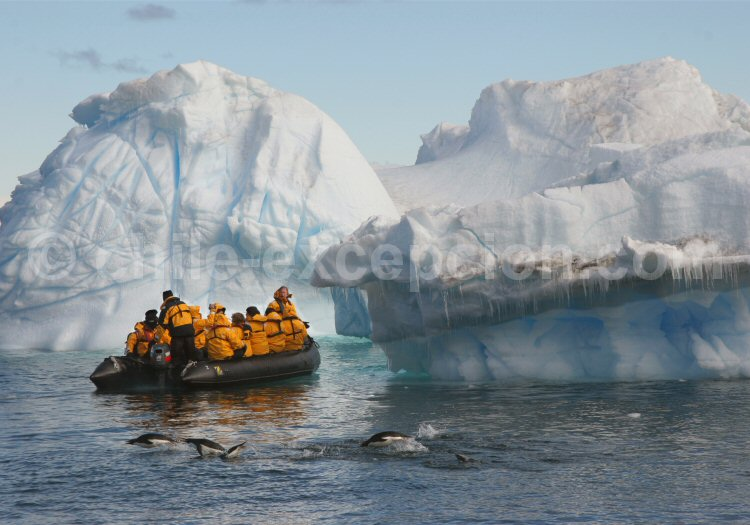Excursion en Zodiac en Antarctique. ©Keith Gunnar