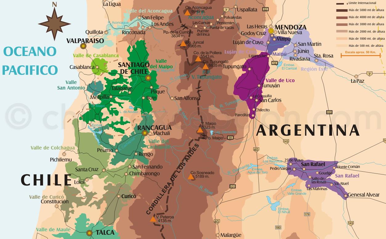 Carte  vins du chili