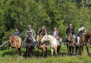 Balade équestre Andes Lodge Patagonie