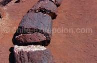 Arbre pétrifié, Site de Pichasca. ©danyelala