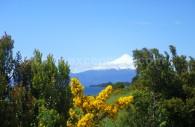 Vue sur le volcan Osorno