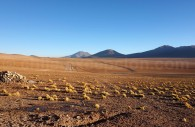 Désert Ojo de Perdriz, Bolivie