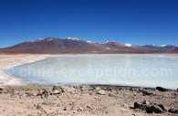 Laguna Blanca, département de Potosí, Bolivie