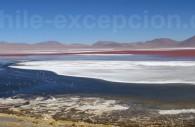 Laguna Colorada, département de Potosí, Bolivie – 9/14