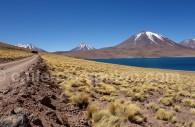 Laguna Miscanti, nord du Chili