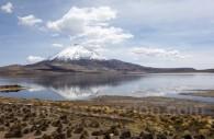 Volcan Parinacota, lac Chungara